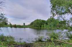 Сельчанин решил искупаться в пруду и утонул