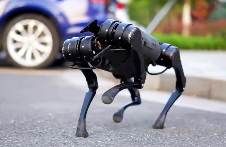 Китайский робопёс Unitree Go1 поступил в продажу за $2700 — он может следовать за хозяином и принести воды