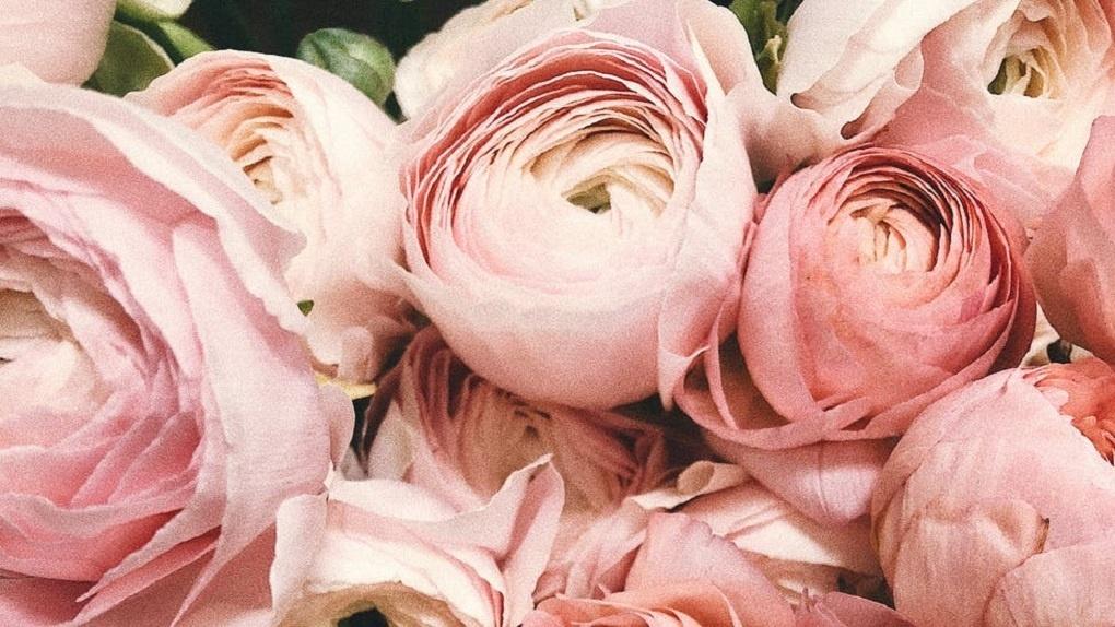 Где можно заказать услуги доставки цветов