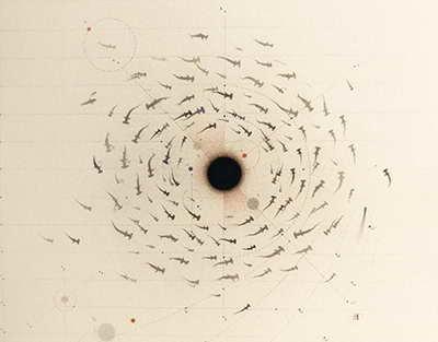 Минторг США внес в черный список 7 технологических организаций из КНР