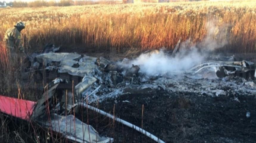 Самолет, на котором разбился Колтовой, оказался самодельным
