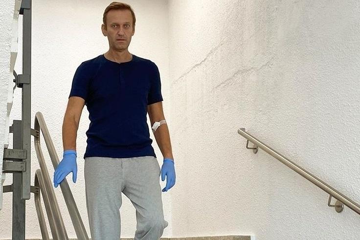 Германия передаст членам ОЗХО доклад по инциденту с Навальным