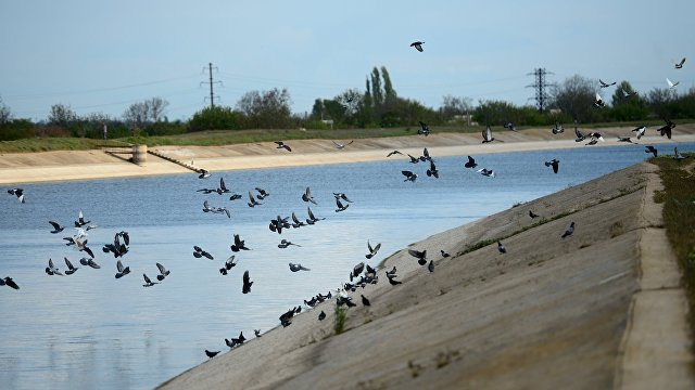 Страна (Украина): отключить еще один канал. Зачем у Зеленского заговорили о строительстве дамбы в Крым