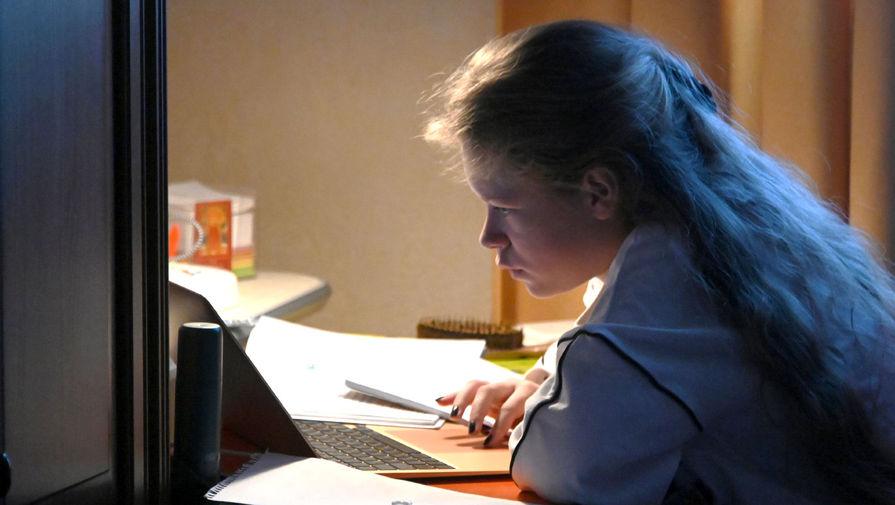 Путин заявил, что дистанционное образование никогда не заменит очное