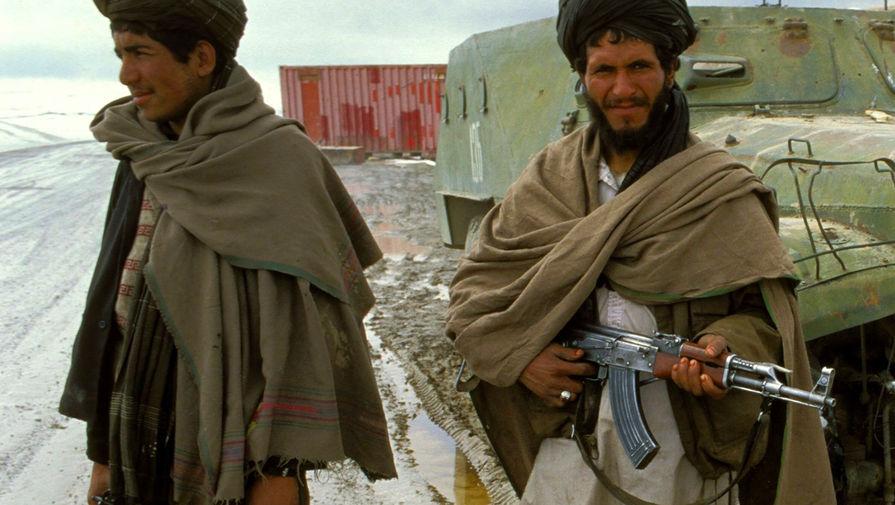 Талибы создадут правительство через совет народных представителей