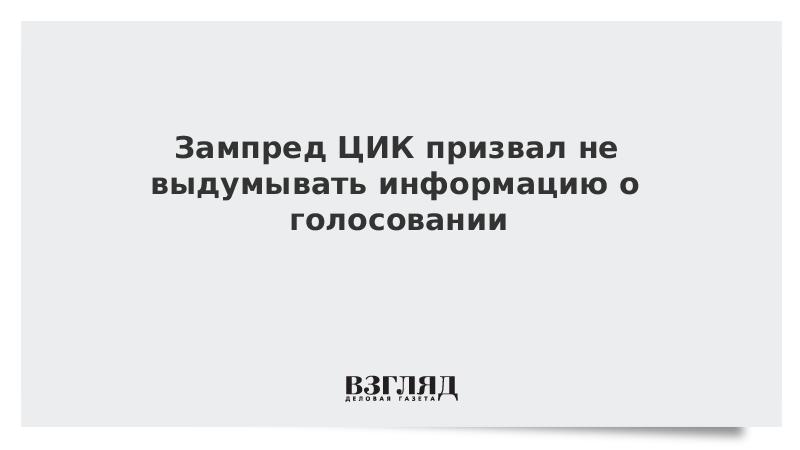 Зампред ЦИК призвал не выдумывать информацию о голосовании