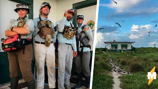 Экологи проникли на закрытый остров, чтобы спасти мир. В ответ планета показала им, как выглядит апокалипсис