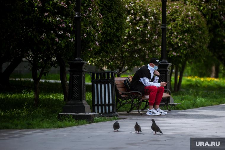 Коронавирус: последние новости 17 мая. Россия справилась с распространением вируса, но получила претензии от Евросоюза