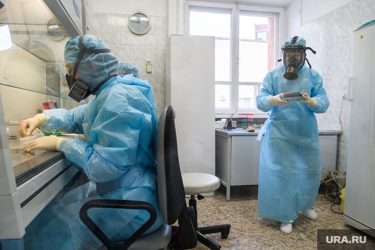 Коронавирус: последние новости 31 мая. В России смягчают карантин, но сотни тысяч могут быть больны