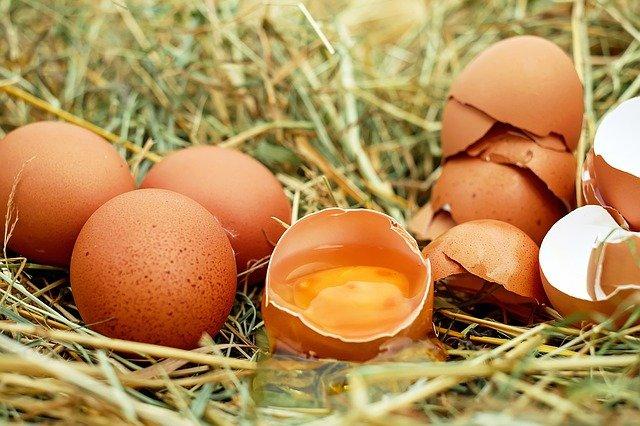 Врач рассказала о самом полезном способе приготовления яиц: холестерина можно не бояться